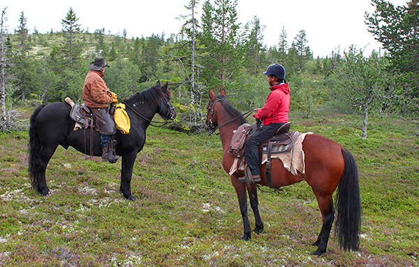 Östen & Saran på sina vackra hästar