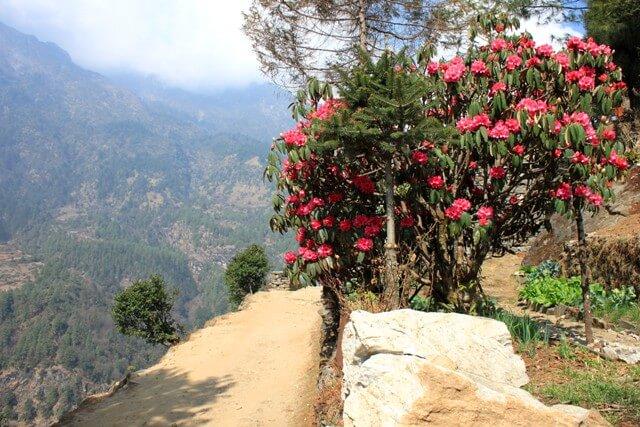 Vår i Nepal
