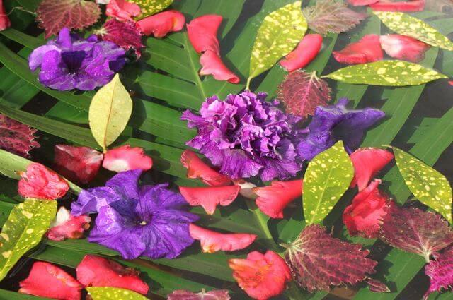 Hotel Barahi's SPA är underbart med vackra blommor överallt.