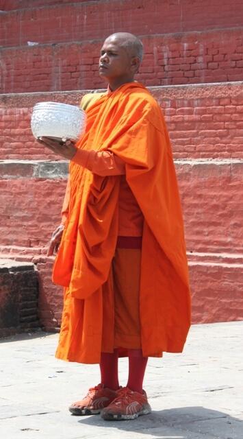 Orange Munk